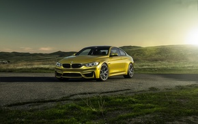 Picture sunset, yellow, bmw, BMW, coupe, shadow, yellow, f82