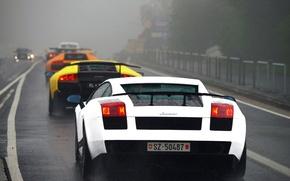 Picture white, orange, yellow, fog, rain, black, Lamborghini, highway, white, gallardo, black, rain, diablo, yellow, murcielago, …