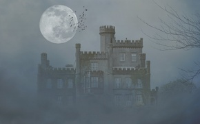 Picture trees, birds, fog, castle, the moon, the darkness