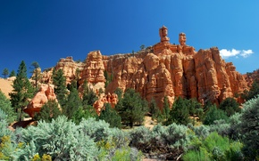 Picture the sky, trees, mountains, slope, Utah, red canyon