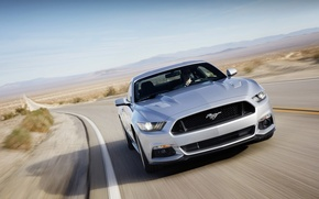Picture road, Mustang, Ford, Ford, Mustang, the front, Muscle car, Muscle car
