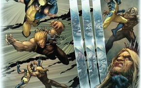 Picture Wolverine, Logan, Wolverine, Marvel, James Howlett, James Howlett, Sabretooth, Sabretooth, Victor Creed
