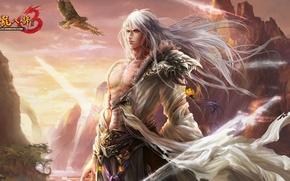 Picture fantasy, the game, anime, art, hero, eagle, guy, thien long bat bo 3