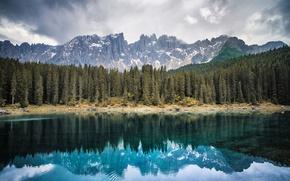 Picture forest, mountains, lake, Italy, Bolzano, Lake Carezza
