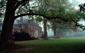 Picture Trees, House, VA