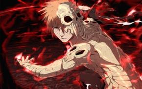 Picture anime, mask, Bleach, bleach, Hollow Ichigo, film 4