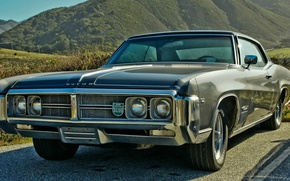 Picture muscle car, wildcat, buick