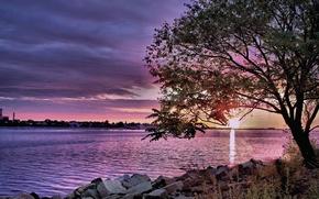 Picture river, dawn, Nature, treatment, morning, sunshine, river, nature, morning, scenery
