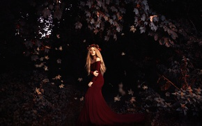 Picture leaves, girl, Rosie Hardy, Falling slowly