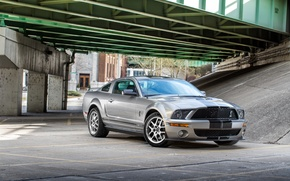 Picture Mustang, Ford, Shelby, GT500, bridge, Cobra