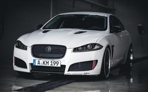 Picture white, jaguar