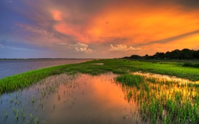 Picture grass, sunset, lake