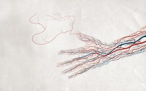 Wallpaper hand, Vienna, paper