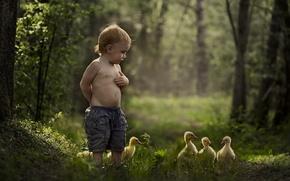 Picture summer, mood, duck, Malchik