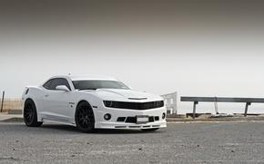 Picture white, Chevrolet, Camaro