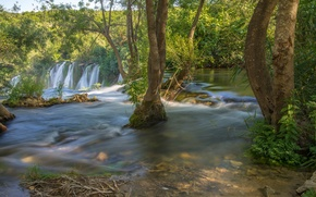 Picture trees, river, waterfall, Bosnia and Herzegovina, Bosnia and Herzegovina, Kravice Falls, Trebižat river, Waterfall Kravice