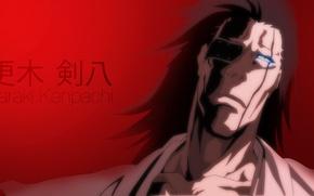 Picture game, Bleach, devil, long hair, eyes, anime, face, captain, asian, manga, japanese, oriental, asiatic, So …