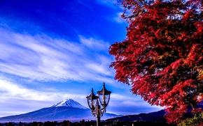 Picture the sky, tree, mountain, Japan, lantern, Fuji, fuji