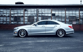 Picture House, Machine, Mercedes, Benz, Door, Beauty, Silver, CLS 550