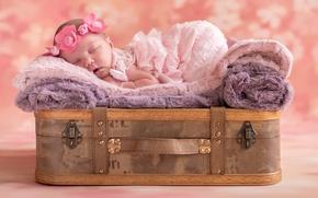 Picture sleep, girl, suitcase, wreath, baby, sleeping
