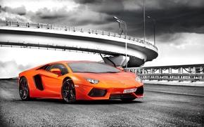 Picture machine, Lamborghini, supercar, orange, LP700-4, Aventador