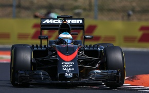 Picture McLaren, Profile, Formula 1, Fernando Alonso, MP4-30