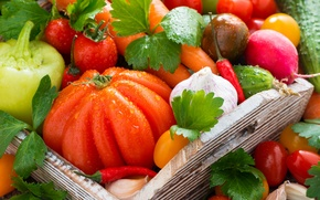 Picture pepper, vegetables, tomatoes, garlic