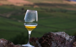 Picture glass, wine, rocks, valley, vineyards, white wine
