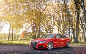 Picture Park, Audi, Audi, red, red