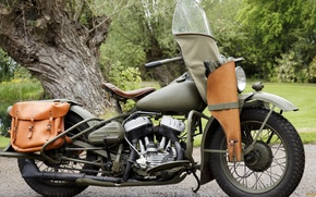 Picture motorcycles, harley, Harley-Davidson