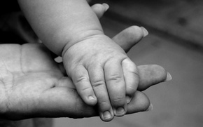 Picture child, black and white, hands, family