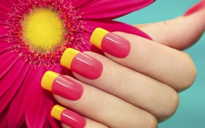 Picture flower, summer, mood, hand, bright, nails, manicure