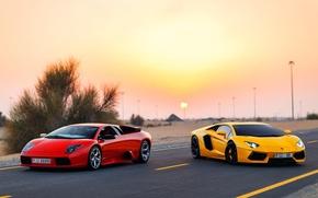 Picture Lamborghini, Dubai, Aventador, Murciélago