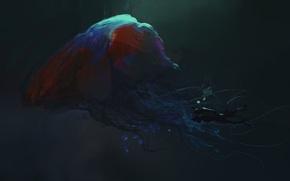 Picture sea, water, fish, art, Jellyfish, parkurtommo
