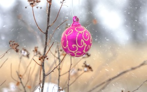 Picture nature, new year, ball, Christmas, decoration, tree