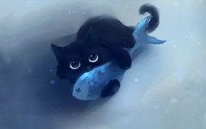 Picture cat, look, background, fish, wallpaper, apofiss, Kote