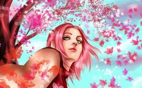 Picture girl, tree, Sakura, art, naruto, pink hair, haruno sakura, hisokakakashi