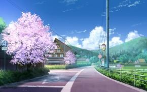 Picture road, clouds, hills, posts, wire, home, Sakura, village, signs, Japan, art, road, Niko-p