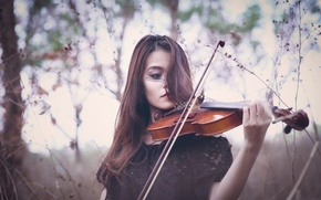 Picture girl, violin, the game