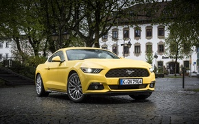 Picture coupe, Mustang, Ford, Mustang, Ford, 2015, EU-spec
