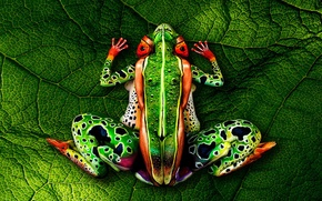 Picture bodypainting, green leaf, naked women, Frog