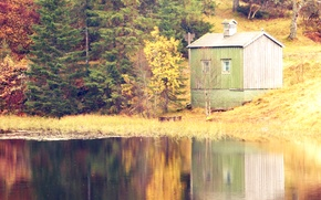 Picture autumn, forest, lake, Norway, house