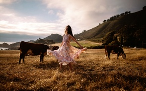 Picture girl, dance, cows, Jesse Duke, Raluca