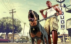 Picture man, dog, bit, Rottweiler, Grand Theft Auto V, Los Santos, Franklin, chop
