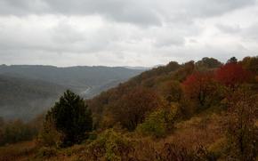 Picture mountains, fog, hills, Autumn, autumn, mountains, fog, fall