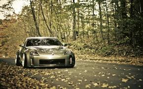 Wallpaper road, autumn, foliage, Nissan, 350z