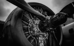 Picture metal, propeller, aircraft engine
