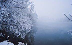 Picture winter, snow, trees, fog, lake, frost, Winter, trees, lake, snow, fog, frost