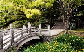 Picture pond, Park, ladder, Japan, stone bridge