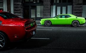 Picture View, Asphalt, Dodge, Challenger, Duo, Hallcat
